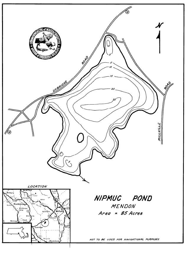 Image Result For Best Maps