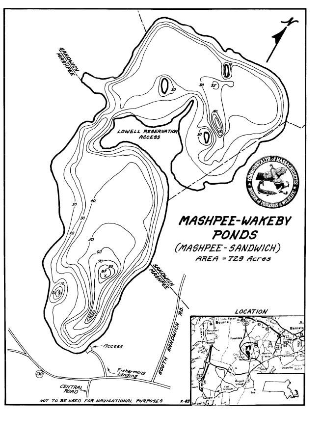 Mashpee wakeby pond swimming for Mass fish stocking