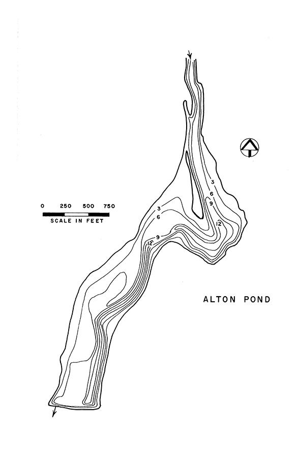 Alton Pond Lake Map