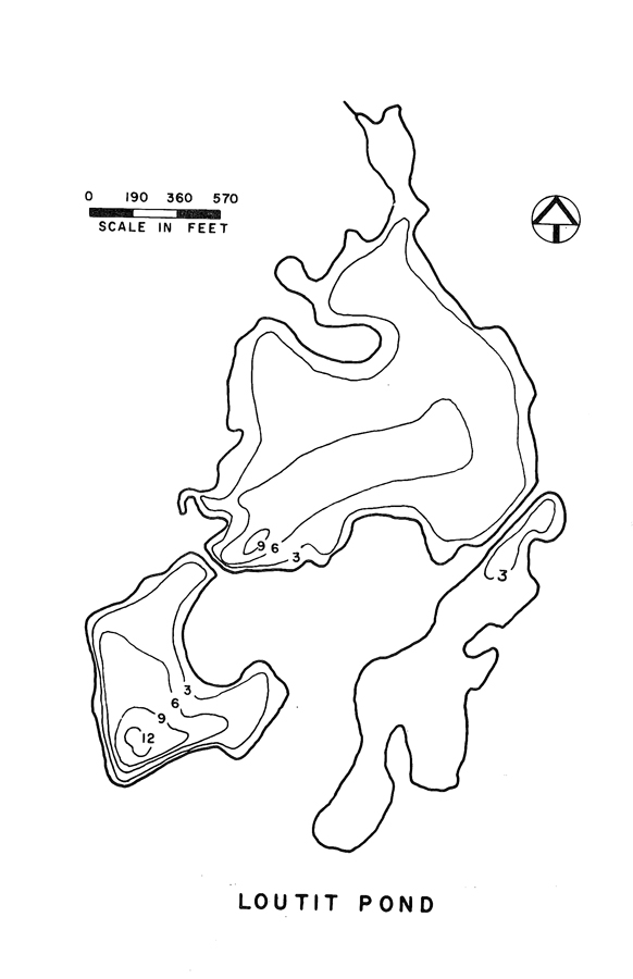 Loutit Pond Lake Map