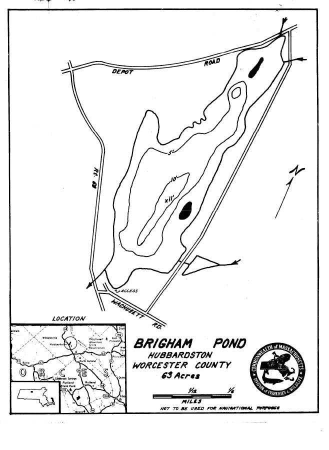 Brigham Pond Map