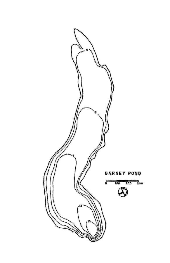 Barney Pond Lake Map