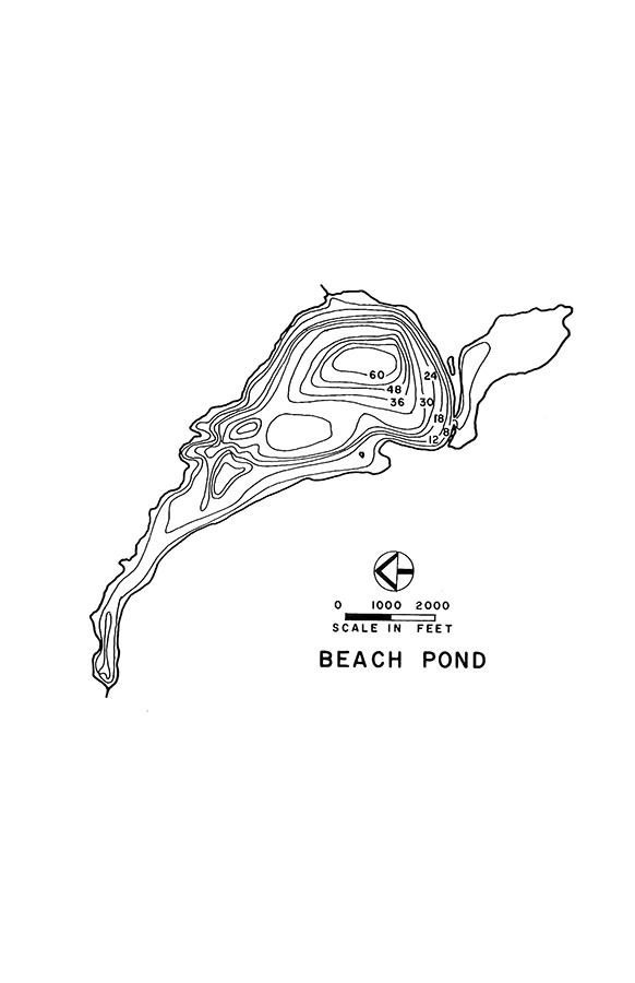 Beach Pond Lake Map