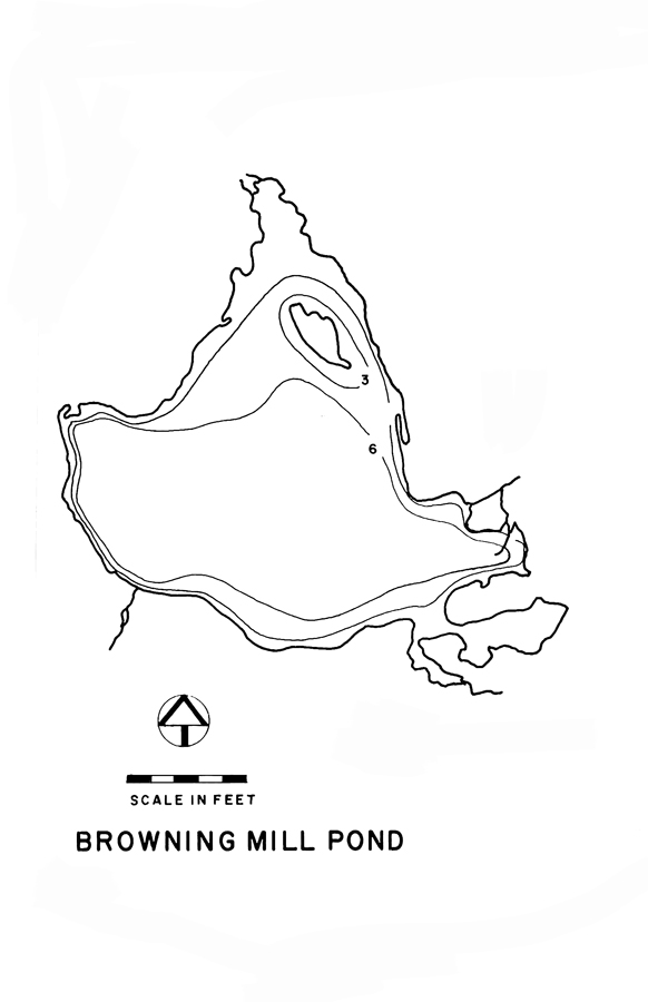 Browning Mill Pond Lake Map