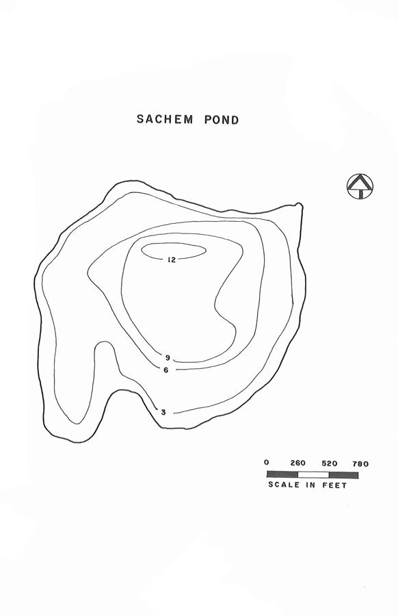 Sachem Pond Lake Map