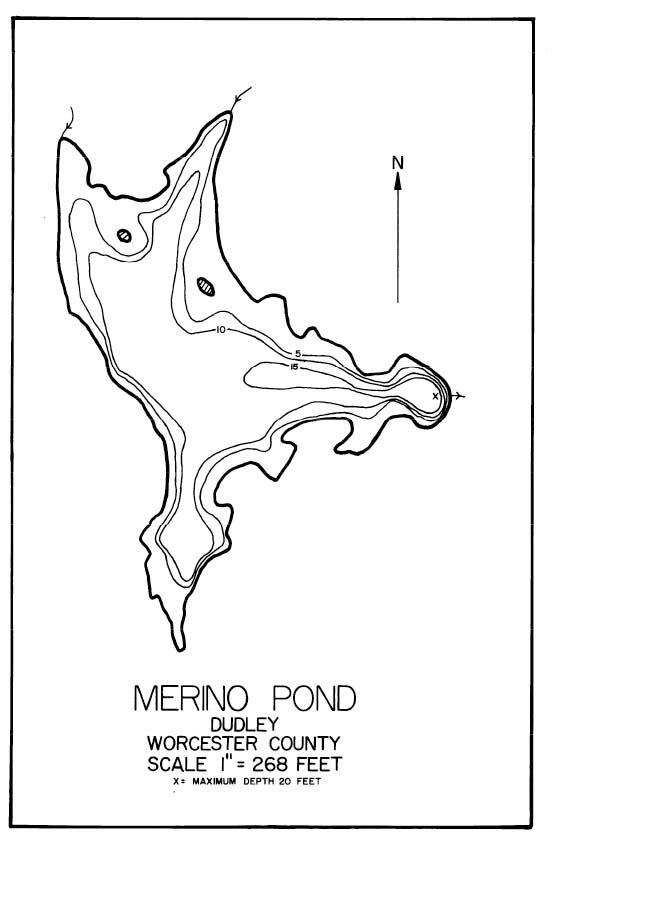 Merino Pond Map