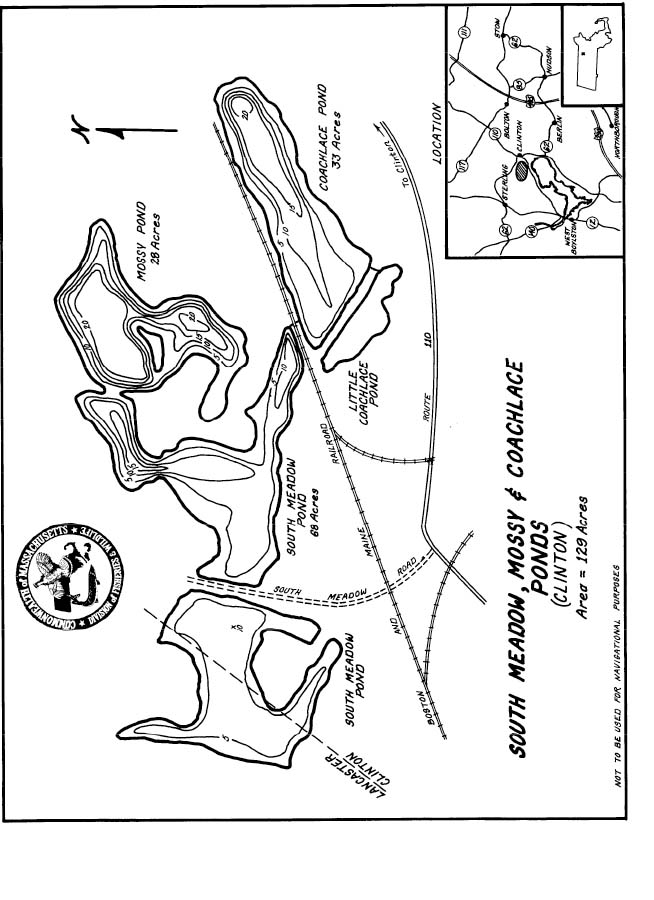 South Meadow Mossy Coachlace Ponds Map